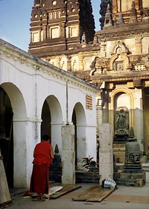Tibetansk munk gör bugningar framför Mahabodhitemplet Tibetan munk doing prostrations in front of The Mahabodhi Temple